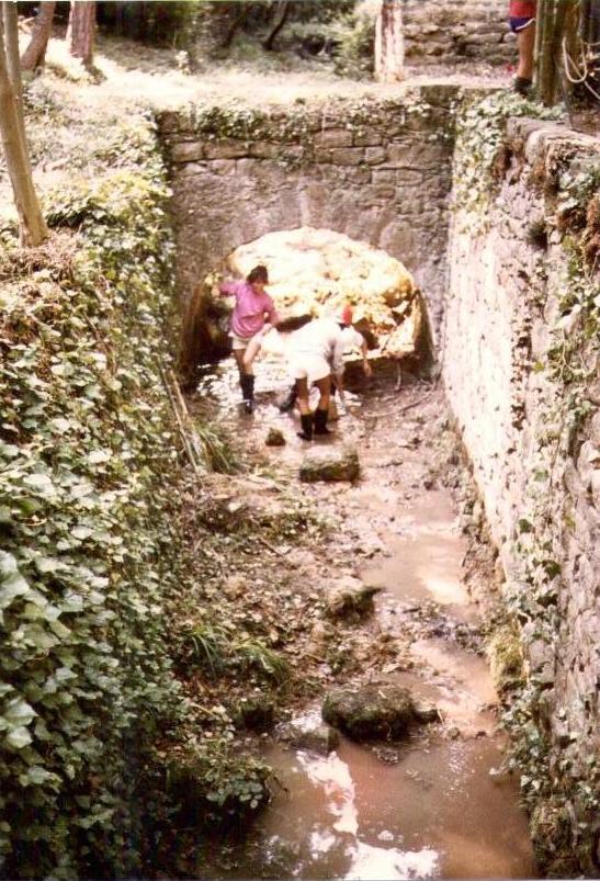 ruisseau 1985